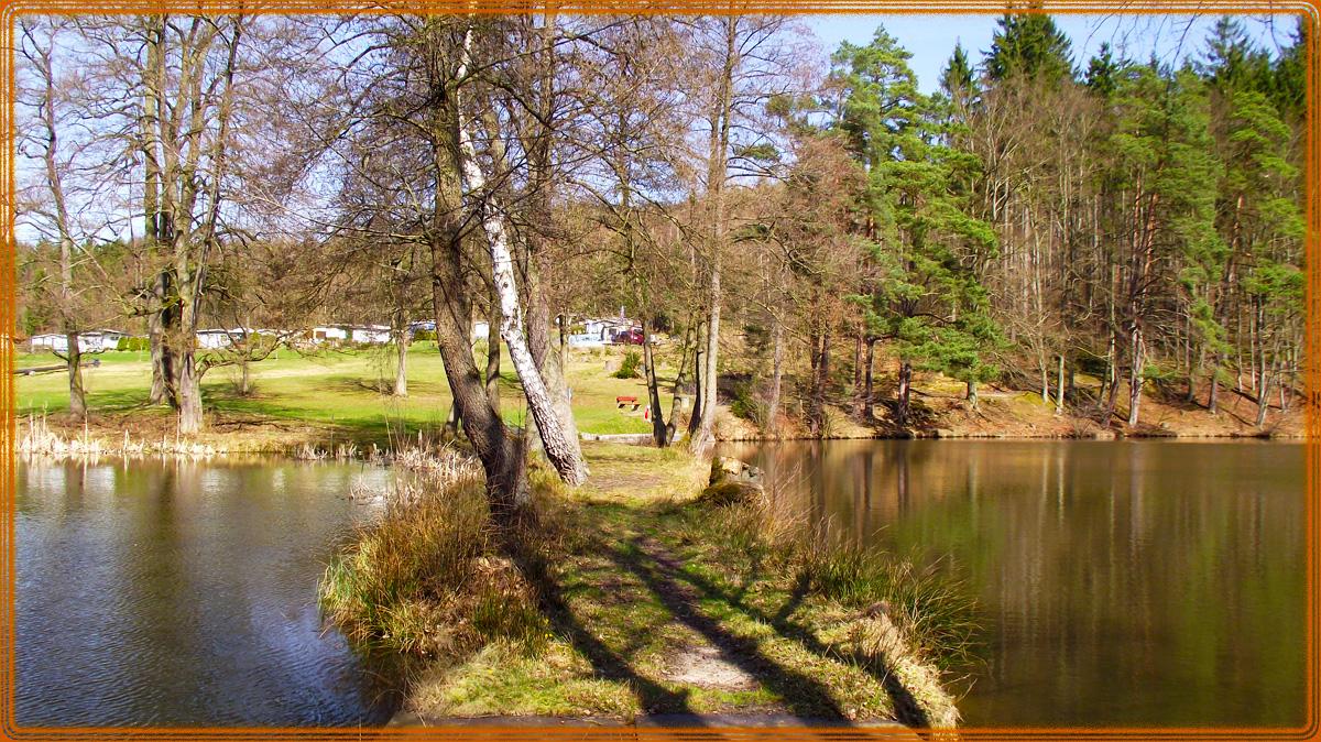 Schönsee Steg im März